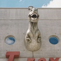 T-rex de Cap sciences